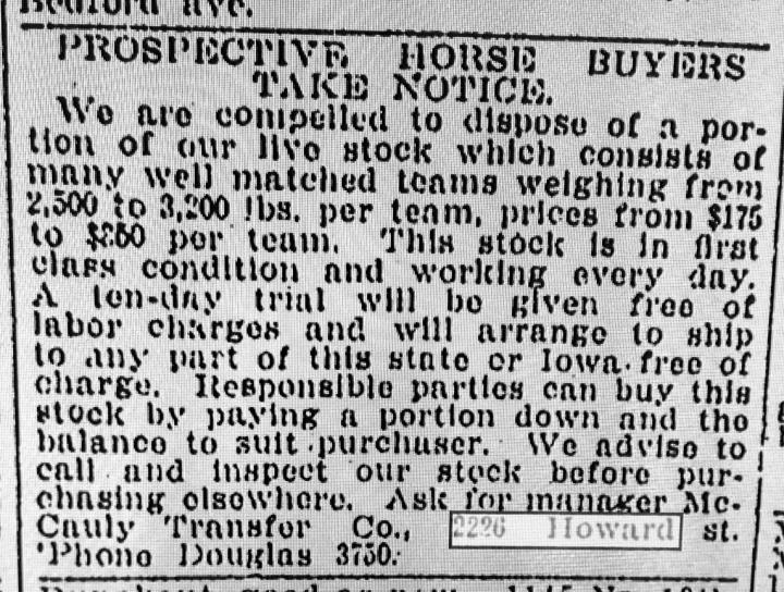 prospectivehorsebuyers
