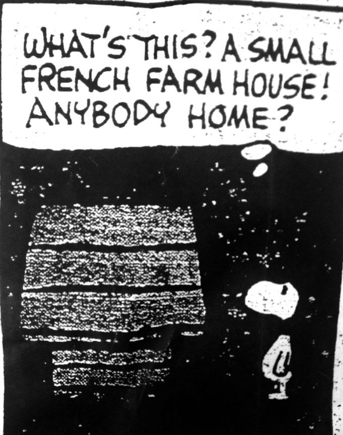 Snoopy Farmhouse